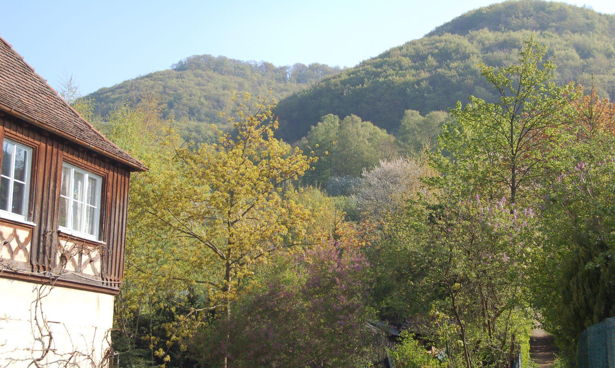 Antiquariat im Lenninger Tal